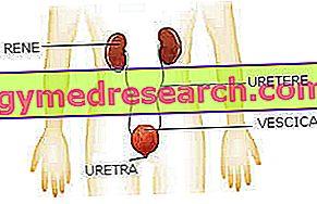 hipertenzija ir šlapimo spalva figos ir hipertenzija