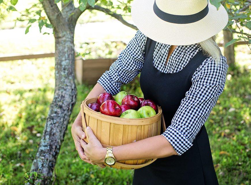 10 geriausių maisto, skirto širdies sveikatai smegenų hipertenzija