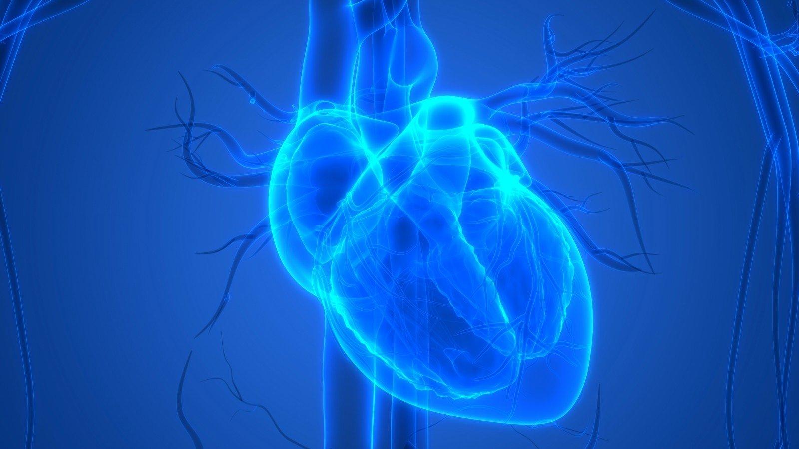 alternatyvi sveikata padidino širdį kaip atlikti tinkamumą sergant hipertenzija