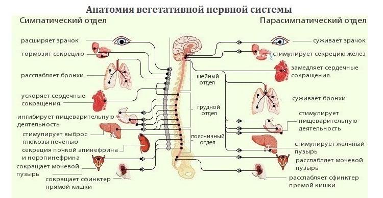 vaistų nuo hipertenzijos forumai