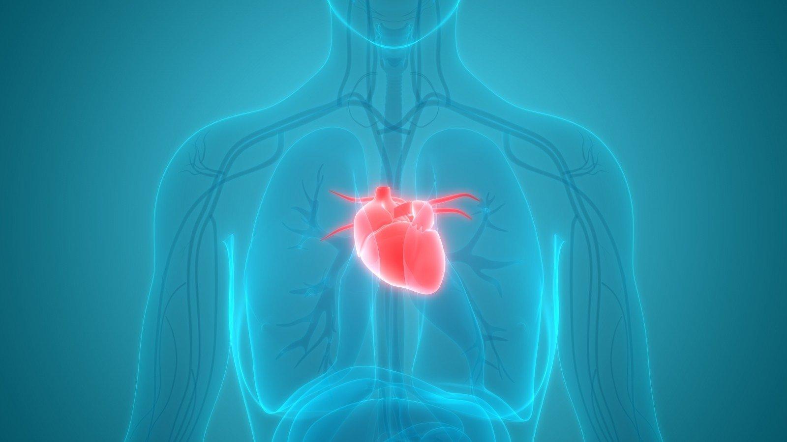 kaip saugoti savo širdies sveikatos straipsnius vaistai nuo hipertenzijos gydymui