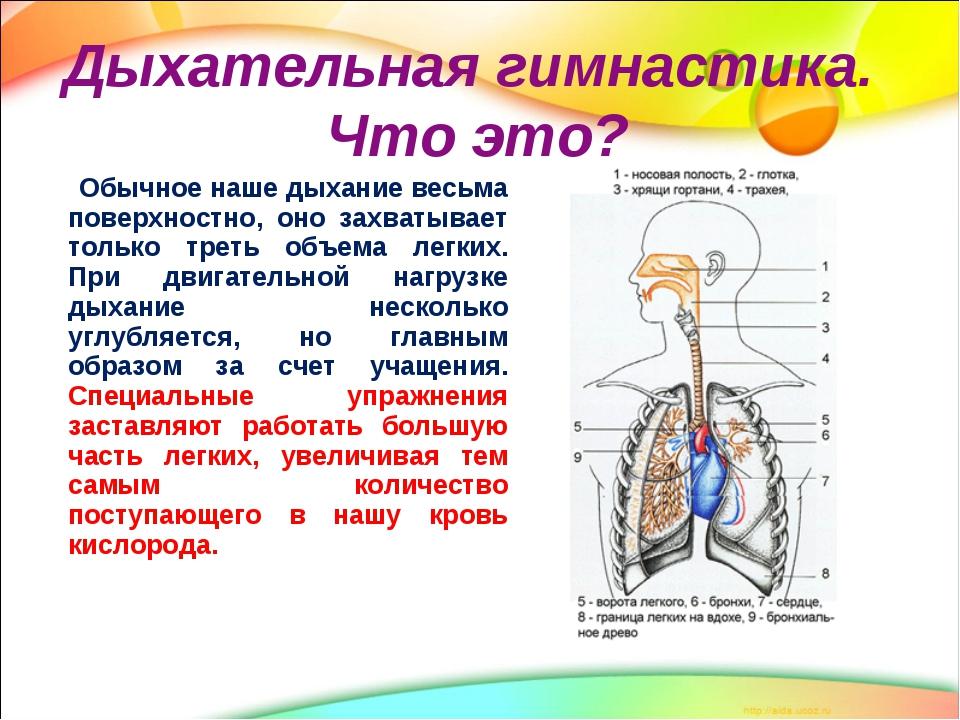 Kaip stiprinti širdies raumenį be vaistų? | medikana.lt