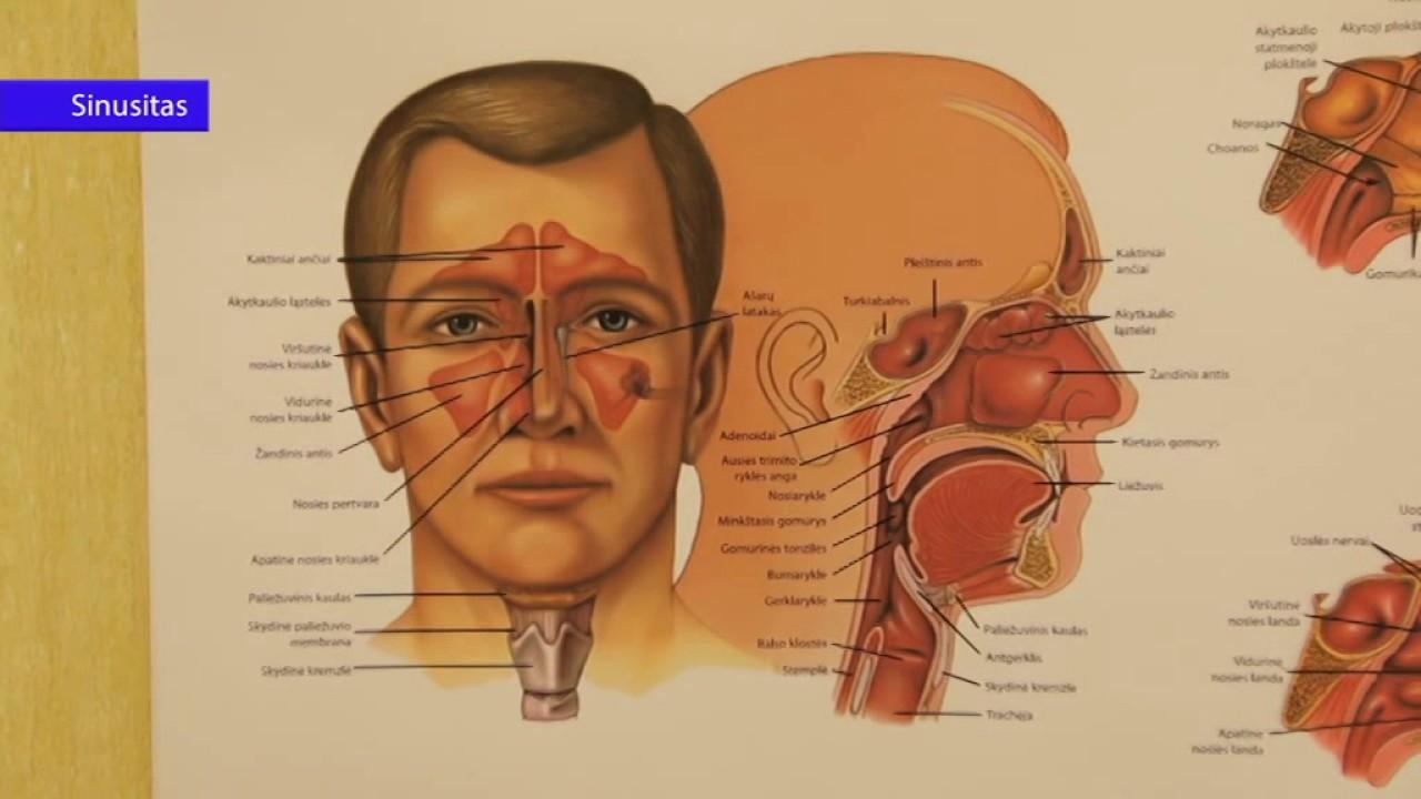 triukšmas galvoje dėl hipertenzijos alfa blokatorių, sergančių hipertenzija, sąrašą