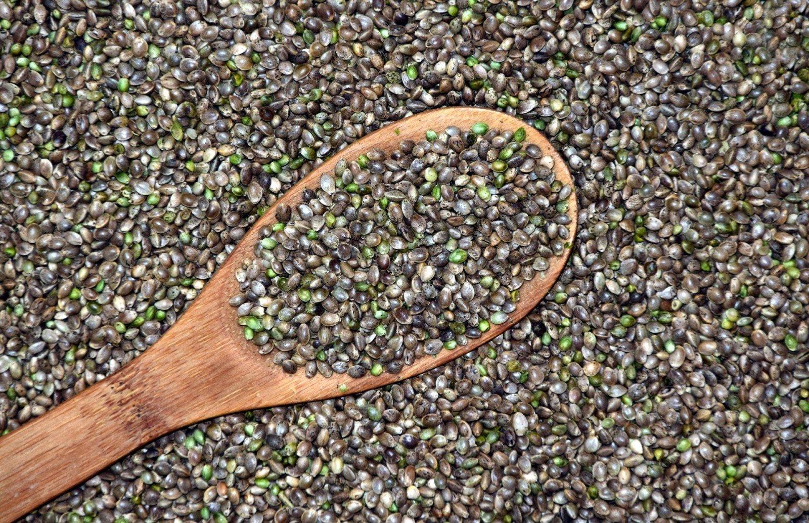kanapių širdies sėklų mitybos nauda sveikatai
