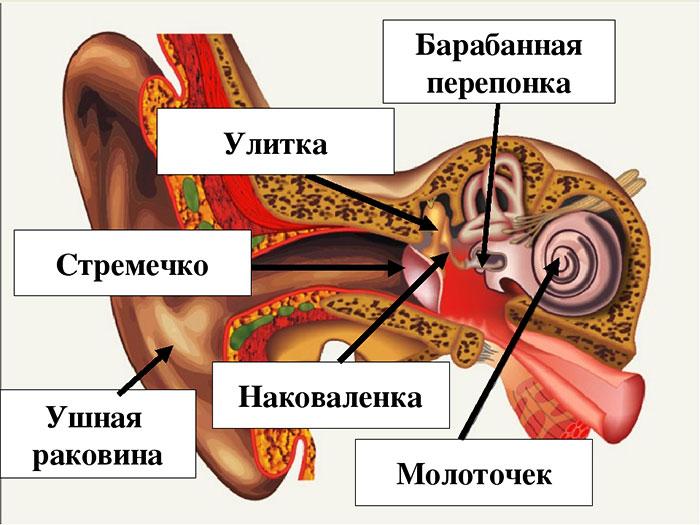 hipertenzijos poveikis odos būklei