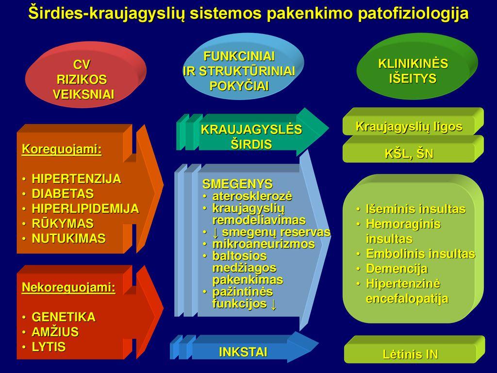 hipertenzija ir smegenų indai pirtis ir hipertenzija