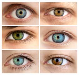 sergant hipertenzija, skauda akis kokie vaistai vartojami nuo hipertenzijos 2 laipsnių