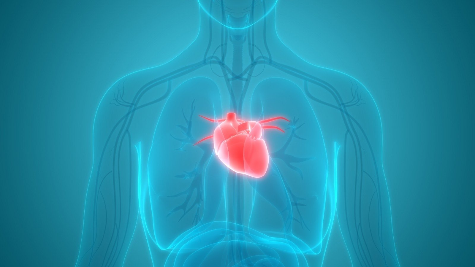 hipertenzija kaip gydyti liaudies mediciną