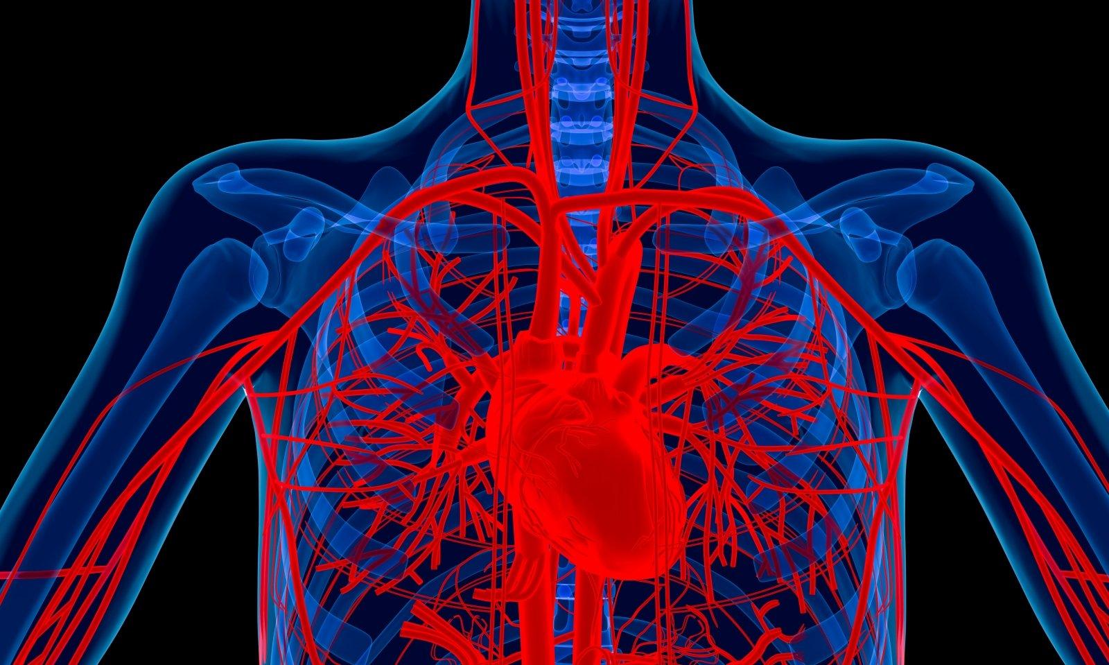 hipertenziją išgydys per 3 savaites raunatin kas dar nuo hipertenzijos
