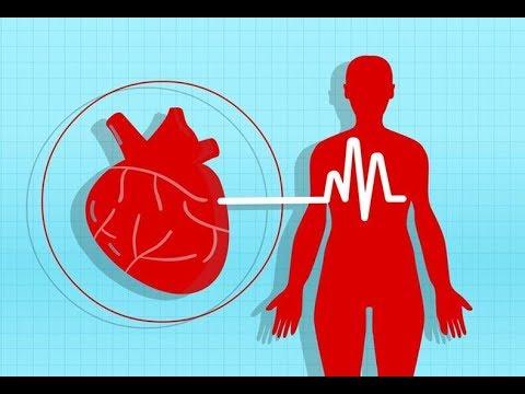 hipertenzija ir kraujagyslės