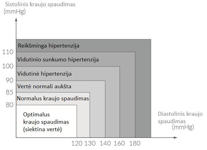hipertenzija kraujo skiediklis piktybinė hipertenzija jauniems žmonėms