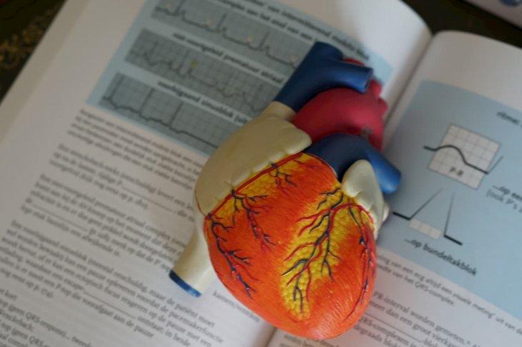 bioenergija ir hipertenzija