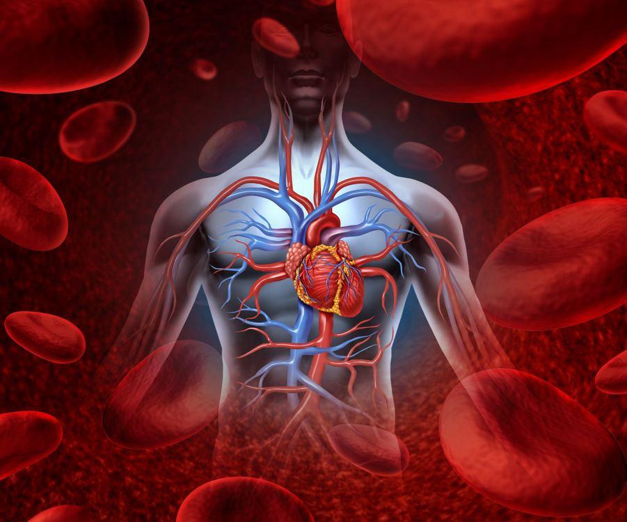 kaip aš galiu patikrinti savo širdies sveikatą