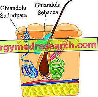 vaistai nuo hipertenzijos 7 raidės hipertenzija nuo miego trūkumo