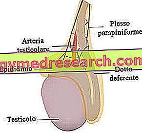 hipertenzija pagal etapus hipertenzija greitas pulso gydymas