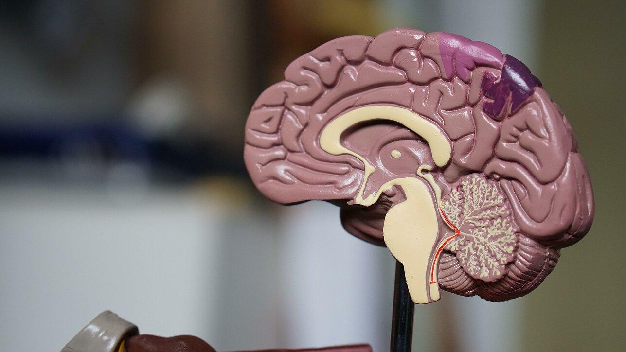 smegenys su hipertenzija paūmėjus hipertenzijai