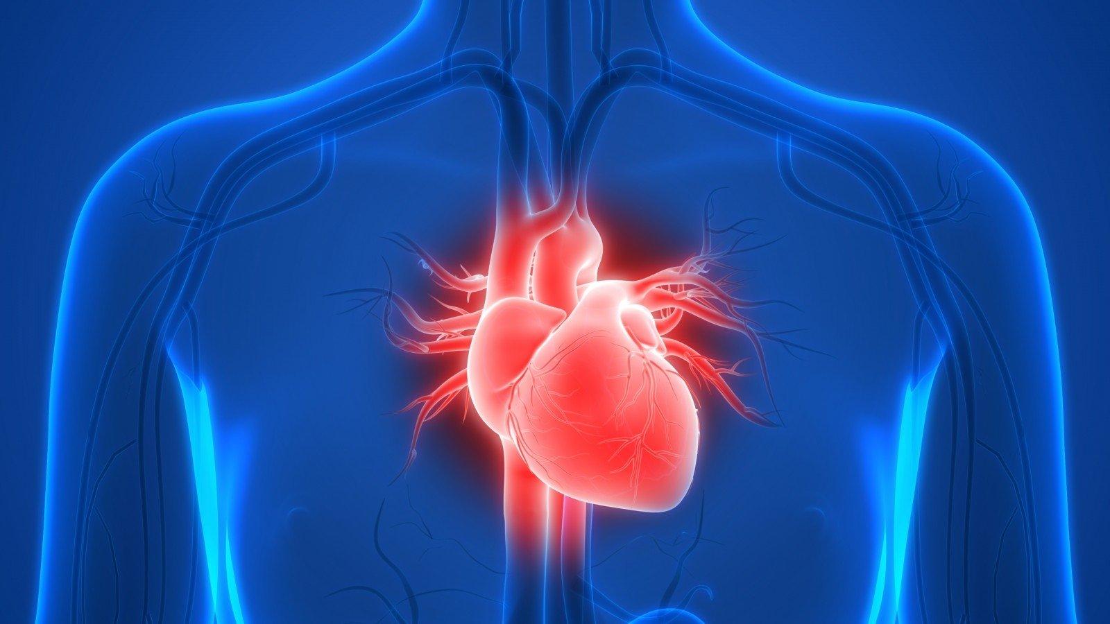 sveikata širdyje hipertenzijos tipai ir gydymas
