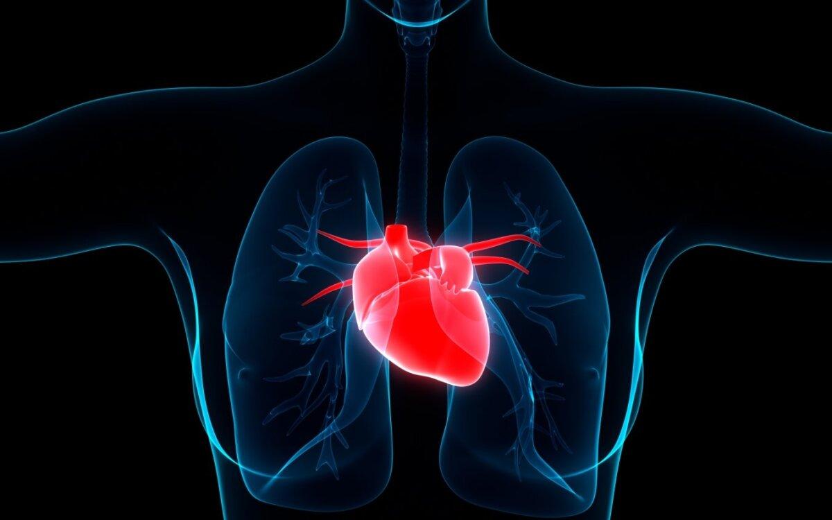kas negydys hipertenzijos, kas nutiks moterų širdies sveikata mci wshington dc