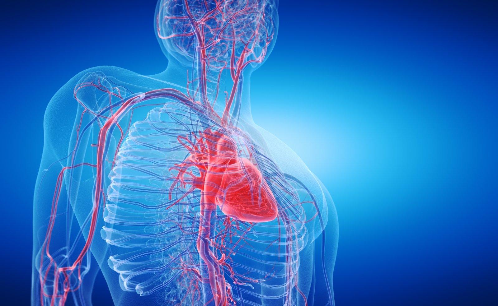 vitaminai širdies sveikatai hipertenzija krūtinės angina
