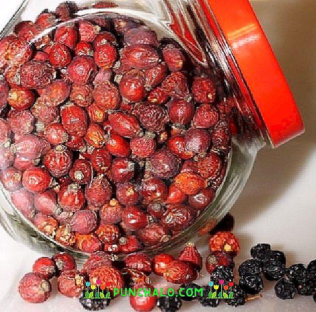 augalai hipertenzijai gydyti